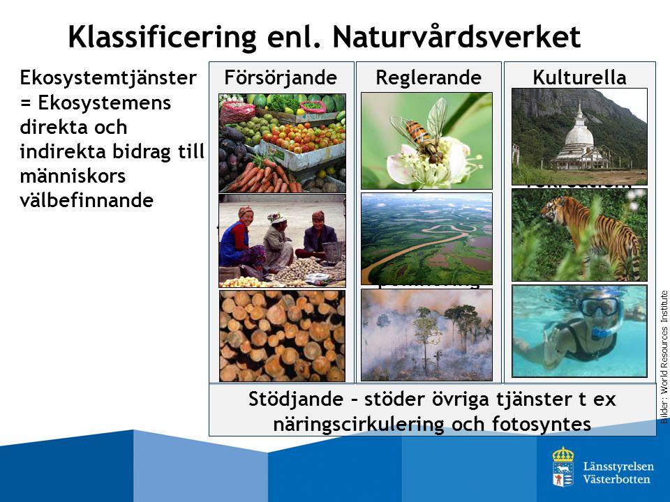 Klassificering enl. Naturvårdsverket Ekosystemtjänster = Ekosystemens direkta och indirekta bidrag till människors välbefinnande Kulturella Icke mater