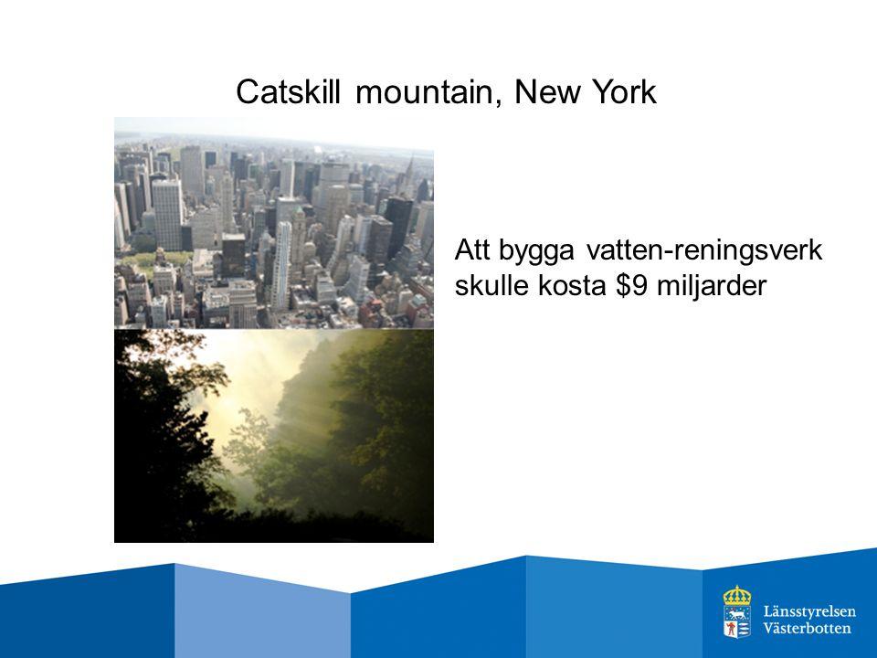Catskill mountain, New York Att bygga vatten-reningsverk skulle kosta $9 miljarder