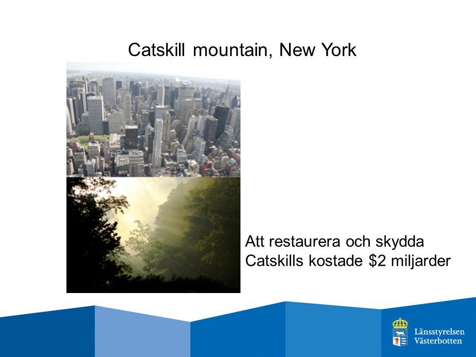 Catskill mountain, New York Att restaurera och skydda Catskills kostade $2 miljarder