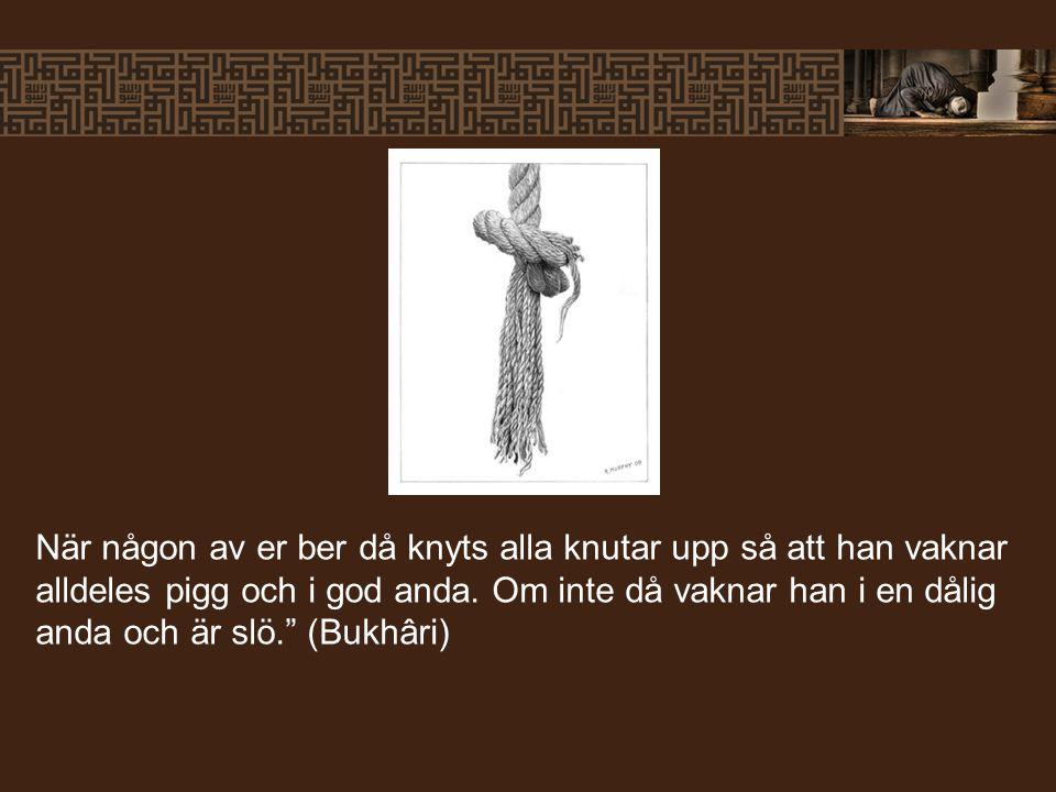 """När någon av er ber då knyts alla knutar upp så att han vaknar alldeles pigg och i god anda. Om inte då vaknar han i en dålig anda och är slö."""" (Bukhâ"""