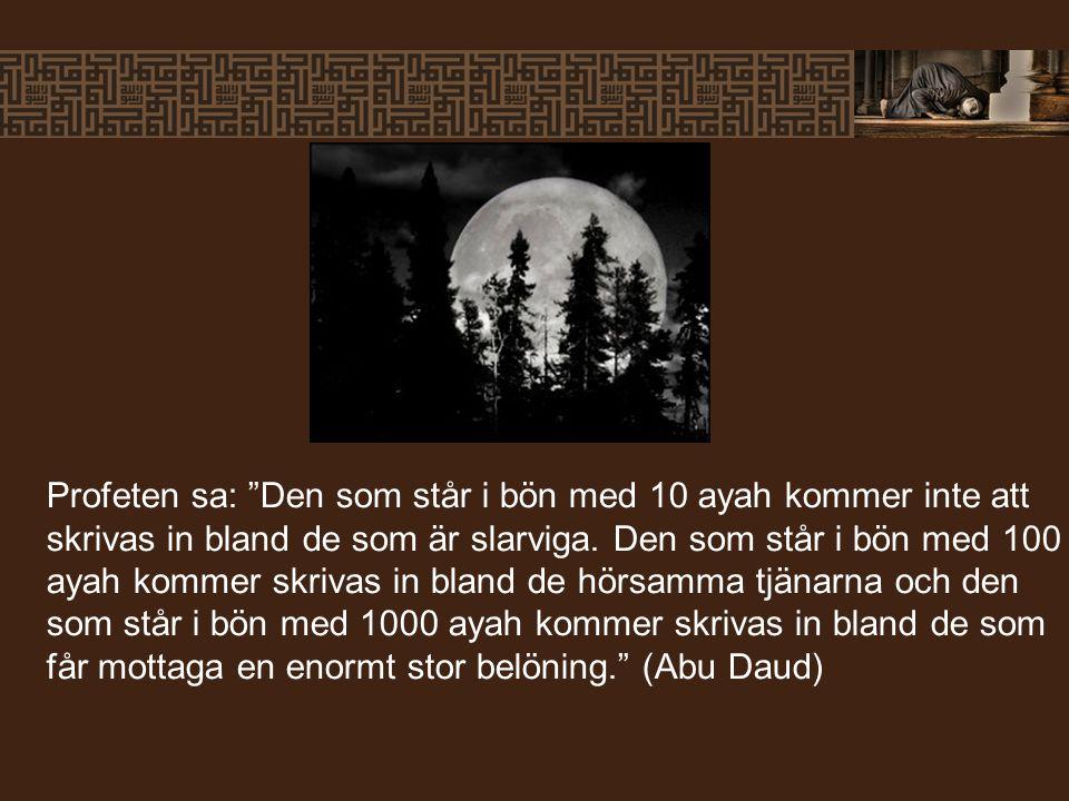 """Profeten sa: """"Den som står i bön med 10 ayah kommer inte att skrivas in bland de som är slarviga. Den som står i bön med 100 ayah kommer skrivas in bl"""
