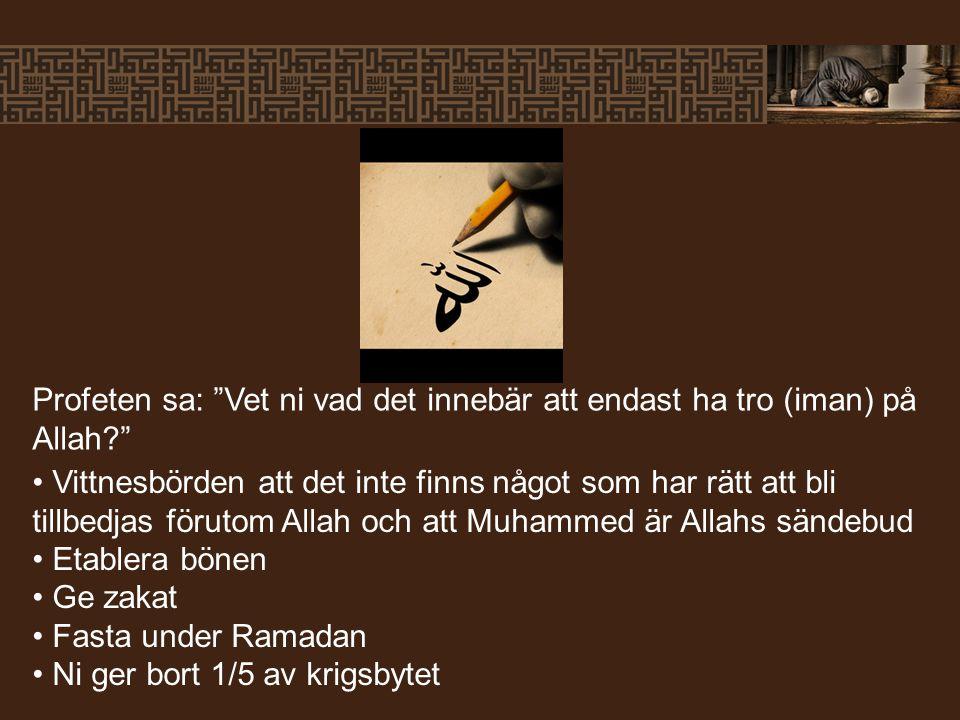 """Profeten sa: """"Vet ni vad det innebär att endast ha tro (iman) på Allah?"""" Vittnesbörden att det inte finns något som har rätt att bli tillbedjas föruto"""