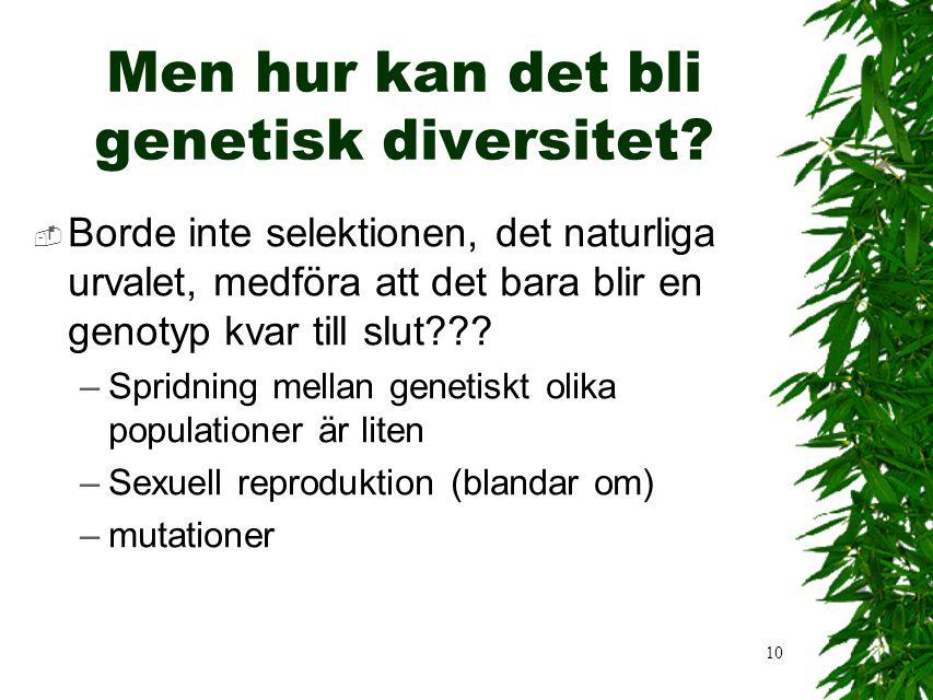 10 Men hur kan det bli genetisk diversitet.