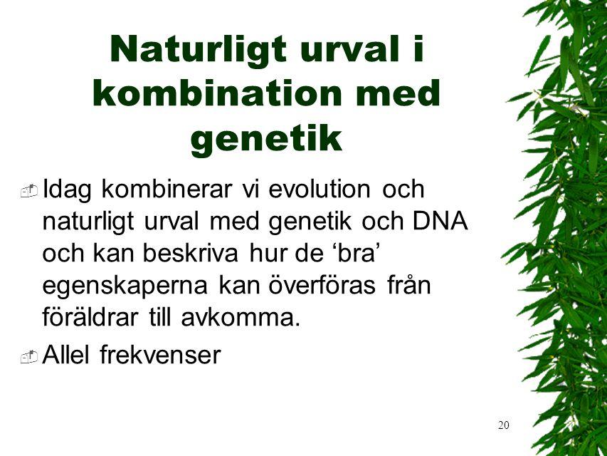 20 Naturligt urval i kombination med genetik  Idag kombinerar vi evolution och naturligt urval med genetik och DNA och kan beskriva hur de 'bra' egenskaperna kan överföras från föräldrar till avkomma.