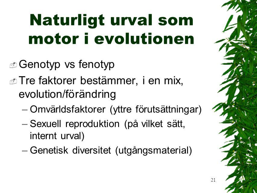 21 Naturligt urval som motor i evolutionen  Genotyp vs fenotyp  Tre faktorer bestämmer, i en mix, evolution/förändring –Omvärldsfaktorer (yttre förutsättningar) –Sexuell reproduktion (på vilket sätt, internt urval) –Genetisk diversitet (utgångsmaterial)