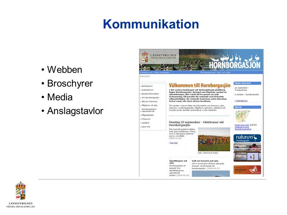 Kommunikation Webben Broschyrer Media Anslagstavlor