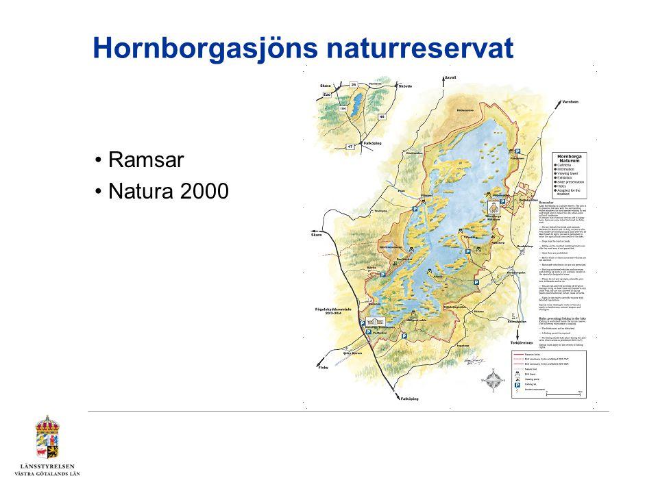 Hornborgasjön förvaltas av Länsstyrelsen i Västra Götalands län på uppdrag av Naturvårdsverket.