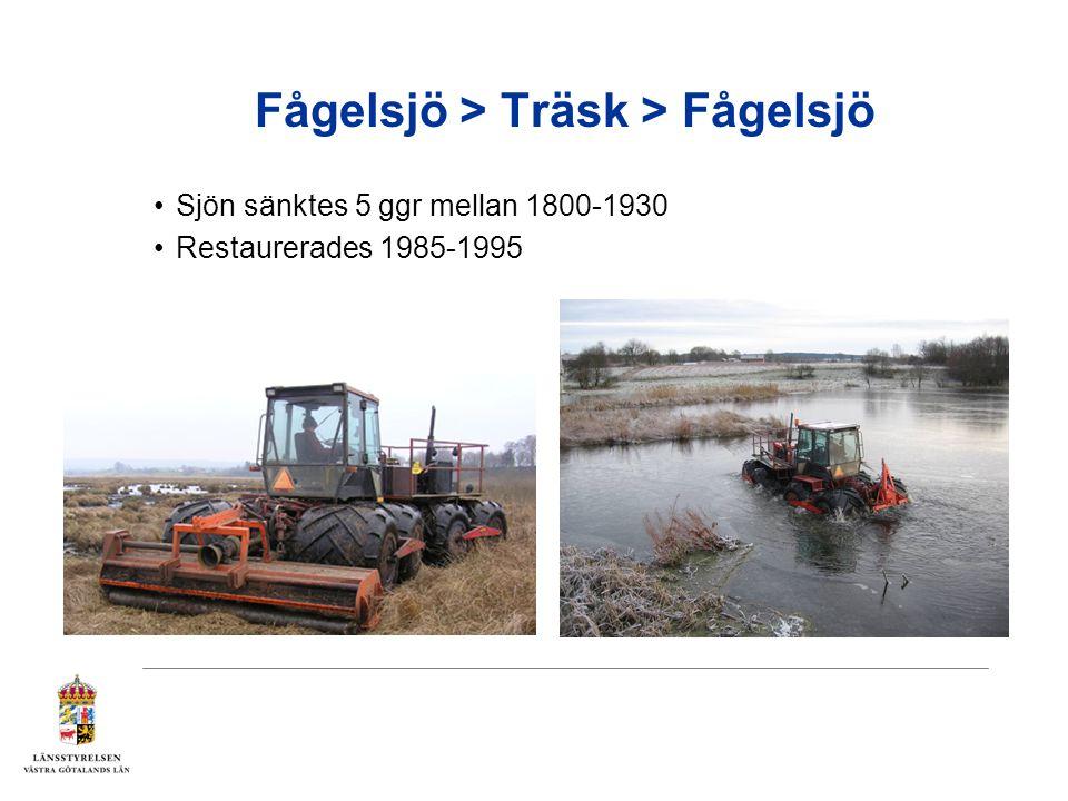 Fågelsjö > Träsk > Fågelsjö Sjön sänktes 5 ggr mellan 1800-1930 Restaurerades 1985-1995