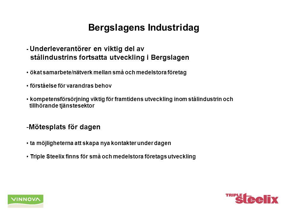 Bergslagens Industridag - Underleverantörer en viktig del av stålindustrins fortsatta utveckling i Bergslagen ökat samarbete/nätverk mellan små och medelstora företag förståelse för varandras behov kompetensförsörjning viktig för framtidens utveckling inom stålindustrin och tillhörande tjänstesektor -Mötesplats för dagen ta möjligheterna att skapa nya kontakter under dagen Triple Steelix finns för små och medelstora företags utveckling