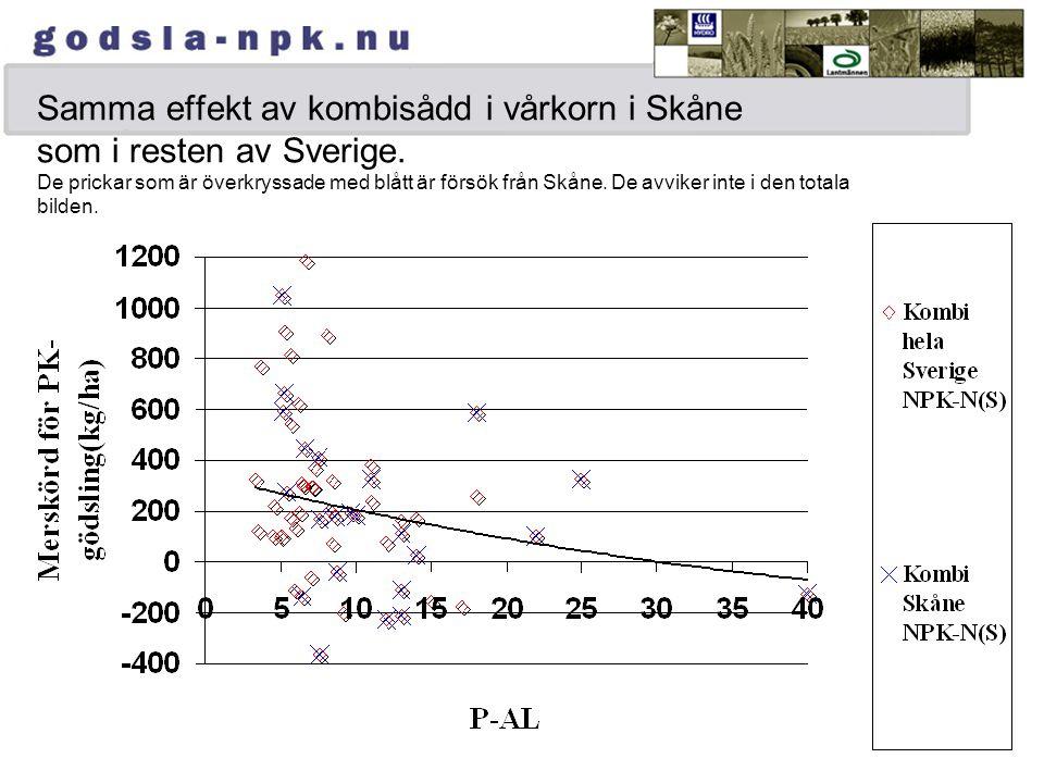 Samma effekt av kombisådd i vårkorn i Skåne som i resten av Sverige.