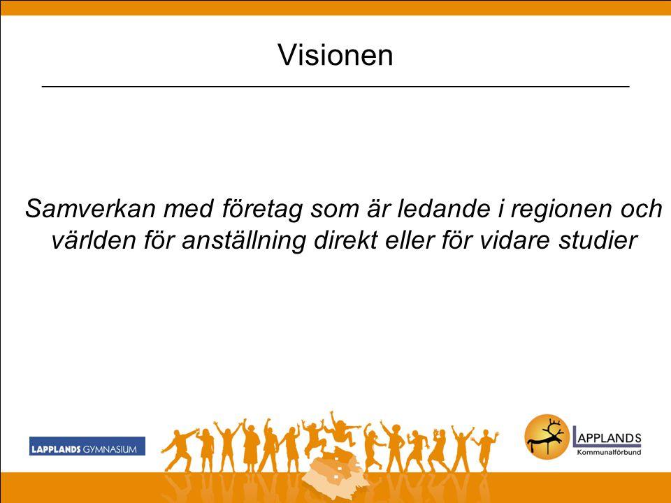 Visionen _________________________________________________________________________________ Attraktivt unikt och varierat programutbud som finns i Sveriges största men ändå distansoberoende region Långt borta men nära