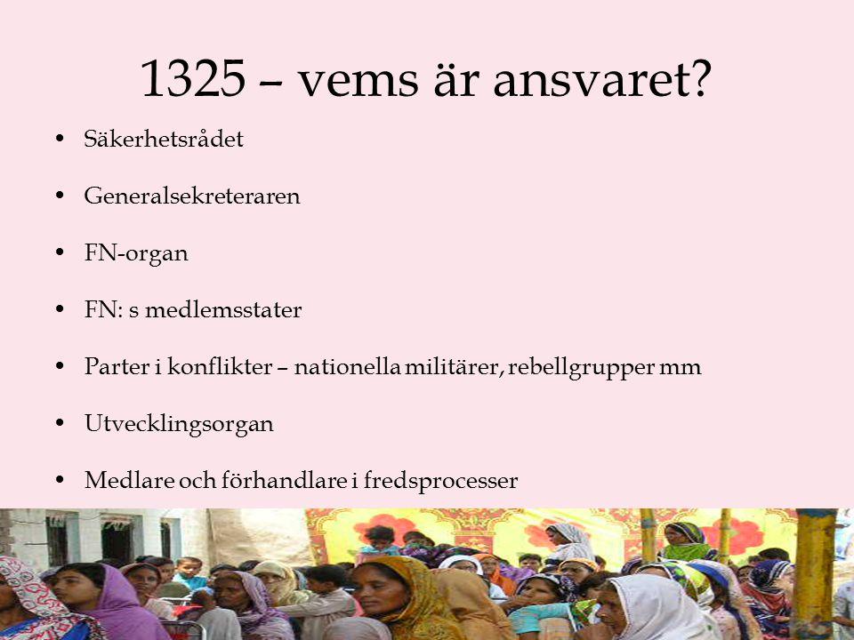 1325 – vems är ansvaret.