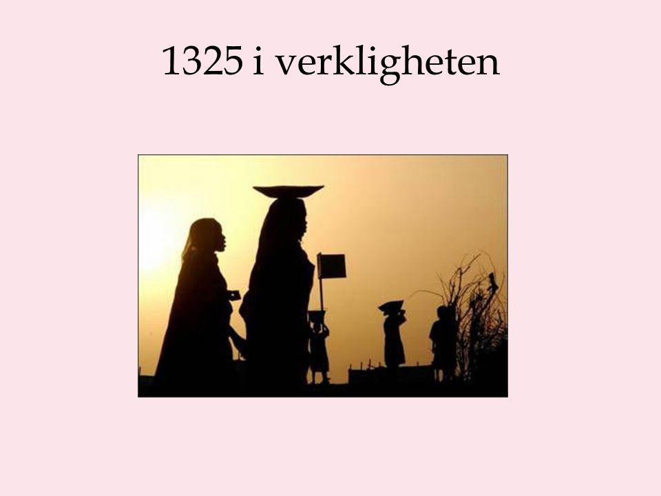 1325 i verkligheten