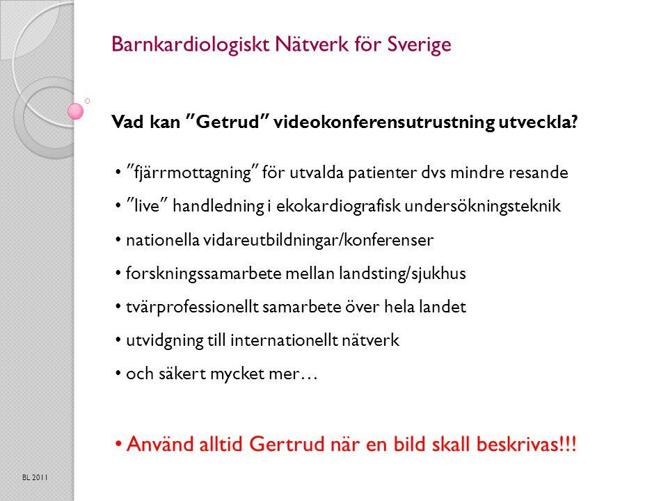 Barnkardiologiskt Nätverk för Sverige Vad kan Getrud videokonferensutrustning utveckla.
