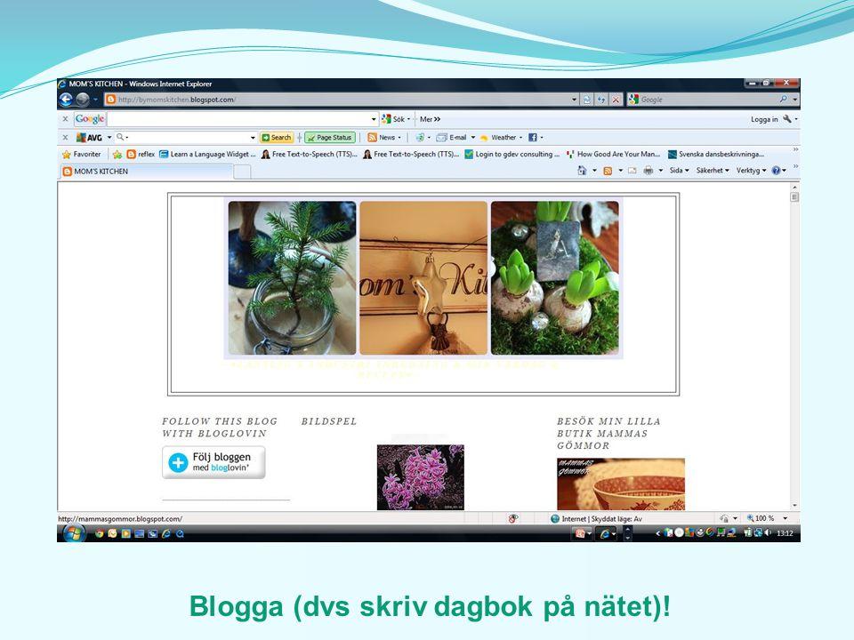 Blogga (dvs skriv dagbok på nätet)!