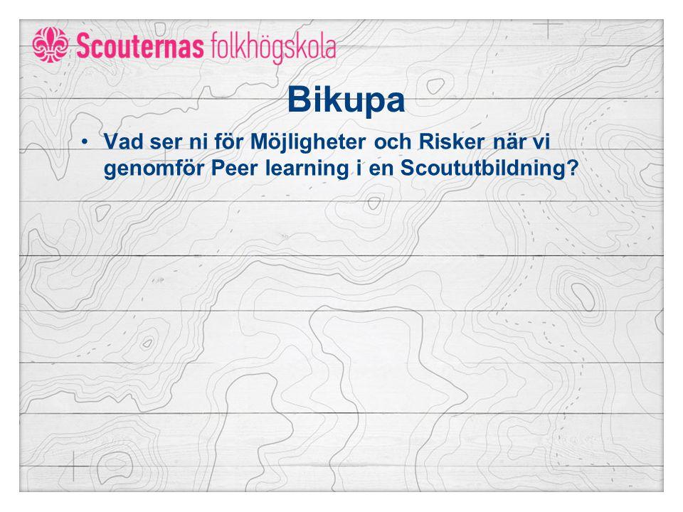 Bikupa Vad ser ni för Möjligheter och Risker när vi genomför Peer learning i en Scoututbildning?