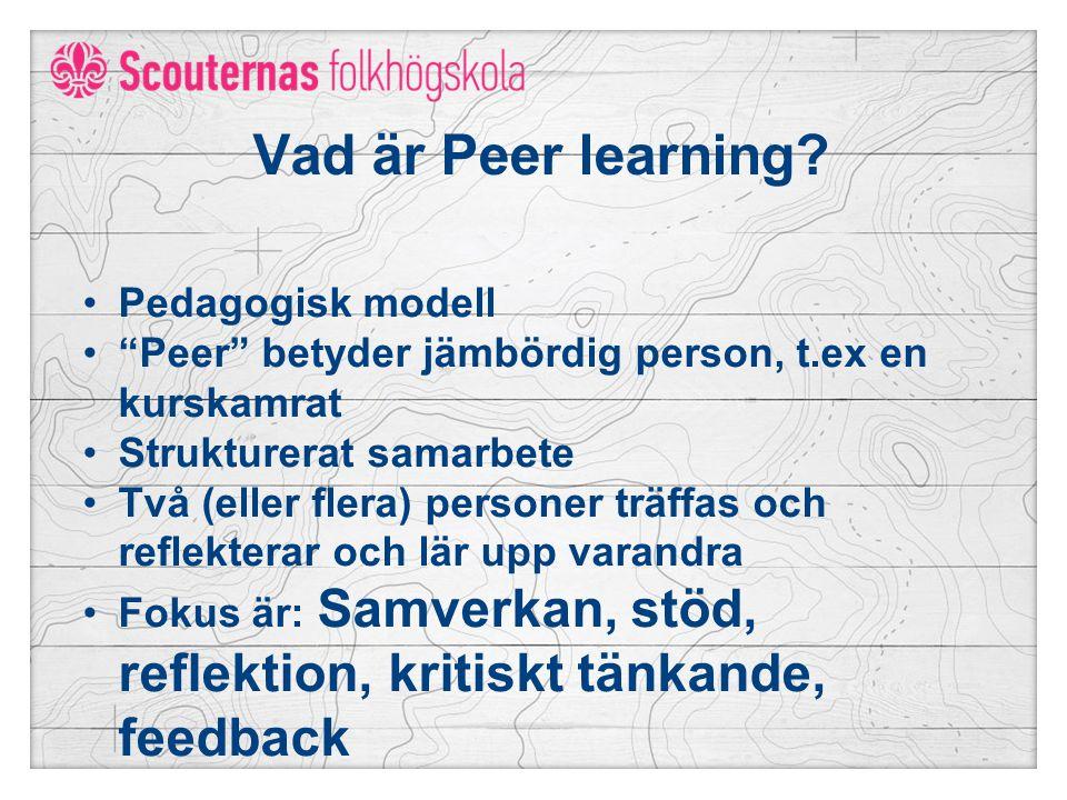 Vad är Peer learning.