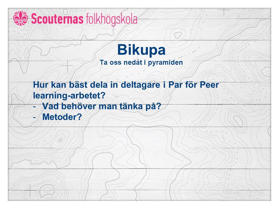 Bikupa Ta oss nedåt i pyramiden Hur kan bäst dela in deltagare i Par för Peer learning-arbetet.