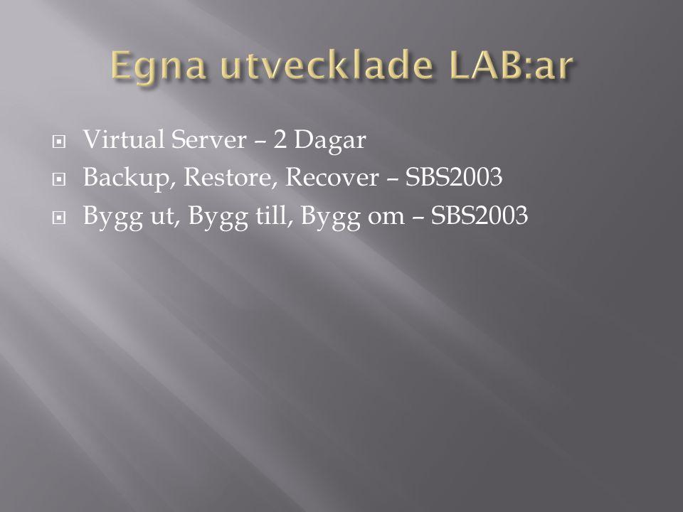  MS2395a – Informator (29,30,31/1)  SBS2003, Windows Server, Infrastructure, Windows Client, Exchange, Sharepoint, VPN, IPSEC….
