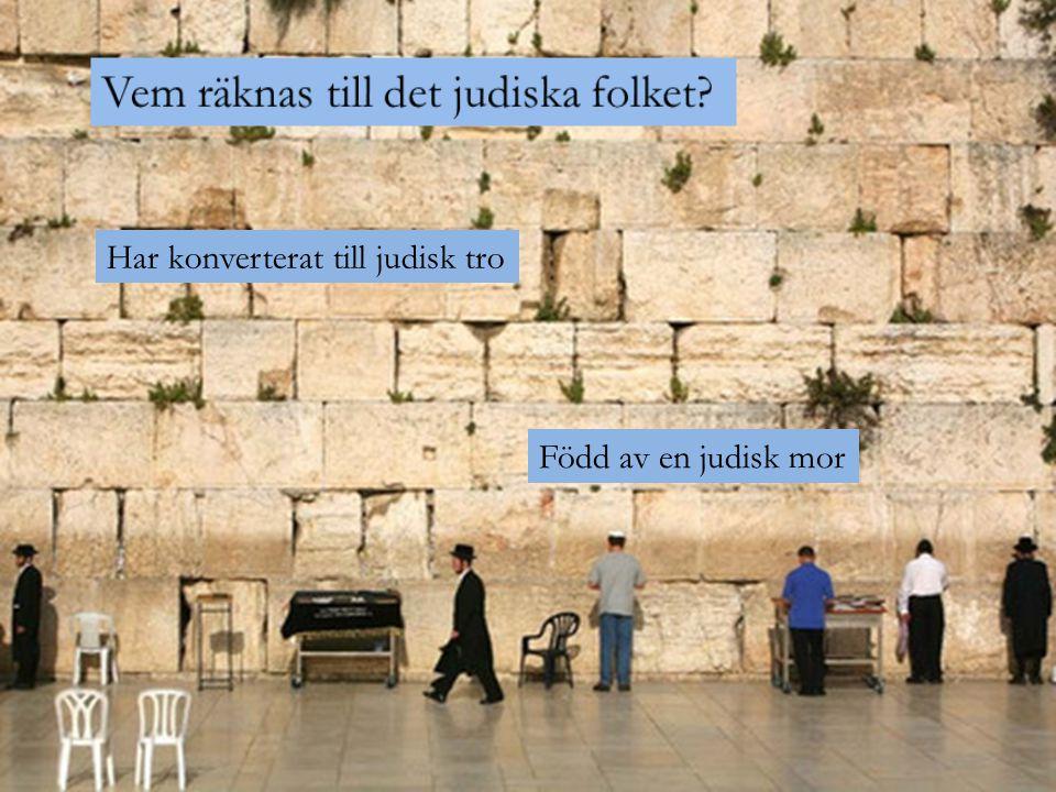 Född av en judisk mor Har konverterat till judisk tro