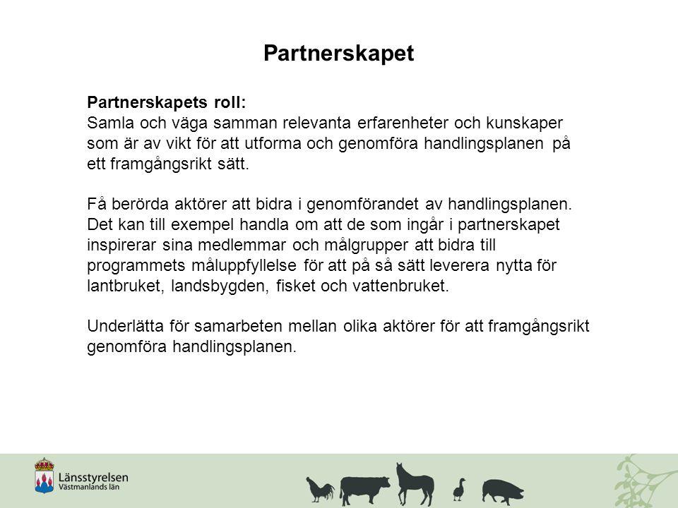 Partnerskapet Partnerskapets roll: Samla och väga samman relevanta erfarenheter och kunskaper som är av vikt för att utforma och genomföra handlingsplanen på ett framgångsrikt sätt.