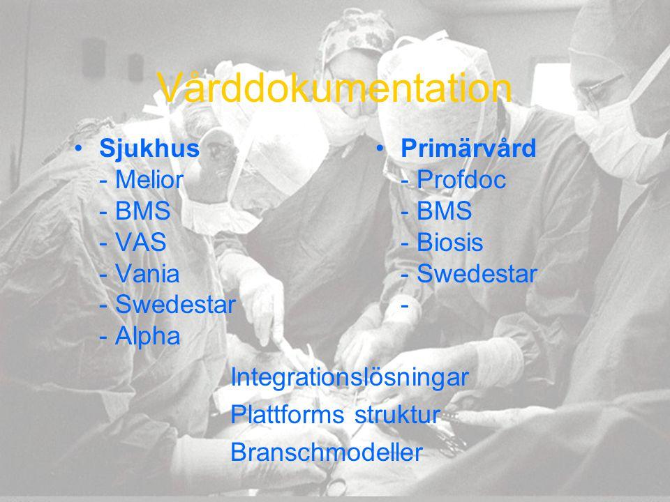 Vårddokumentation Sjukhus - Melior - BMS - VAS - Vania - Swedestar - Alpha Primärvård - Profdoc - BMS - Biosis - Swedestar - Integrationslösningar Pla