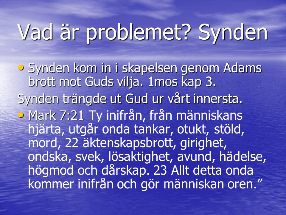 Vad är problemet? Synden Synden kom in i skapelsen genom Adams brott mot Guds vilja. 1mos kap 3. Synden kom in i skapelsen genom Adams brott mot Guds