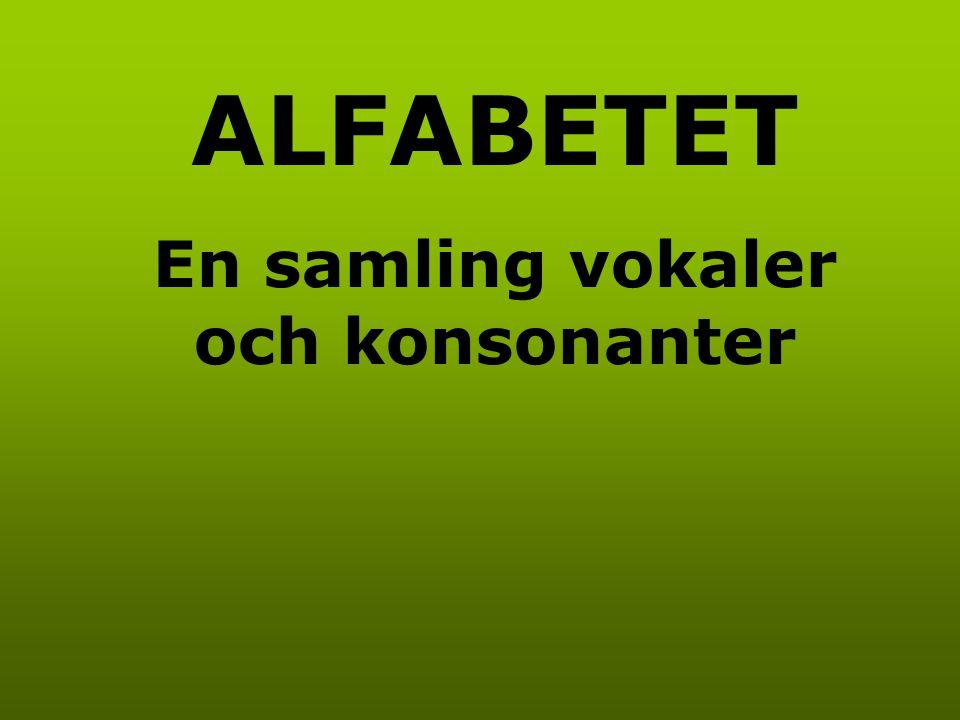 ALFABETET En samling vokaler och konsonanter