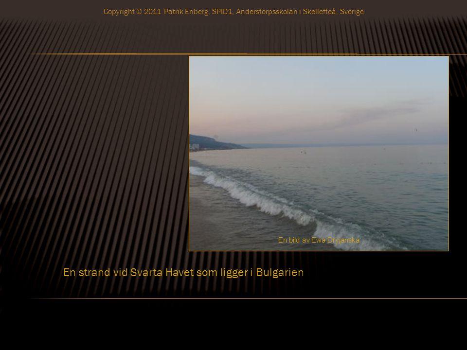 En strand vid Svarta Havet som ligger i Bulgarien En bild av Ewa Dryjanska Copyright © 2011 Patrik Enberg, SPID1, Anderstorpsskolan i Skellefteå, Sverige