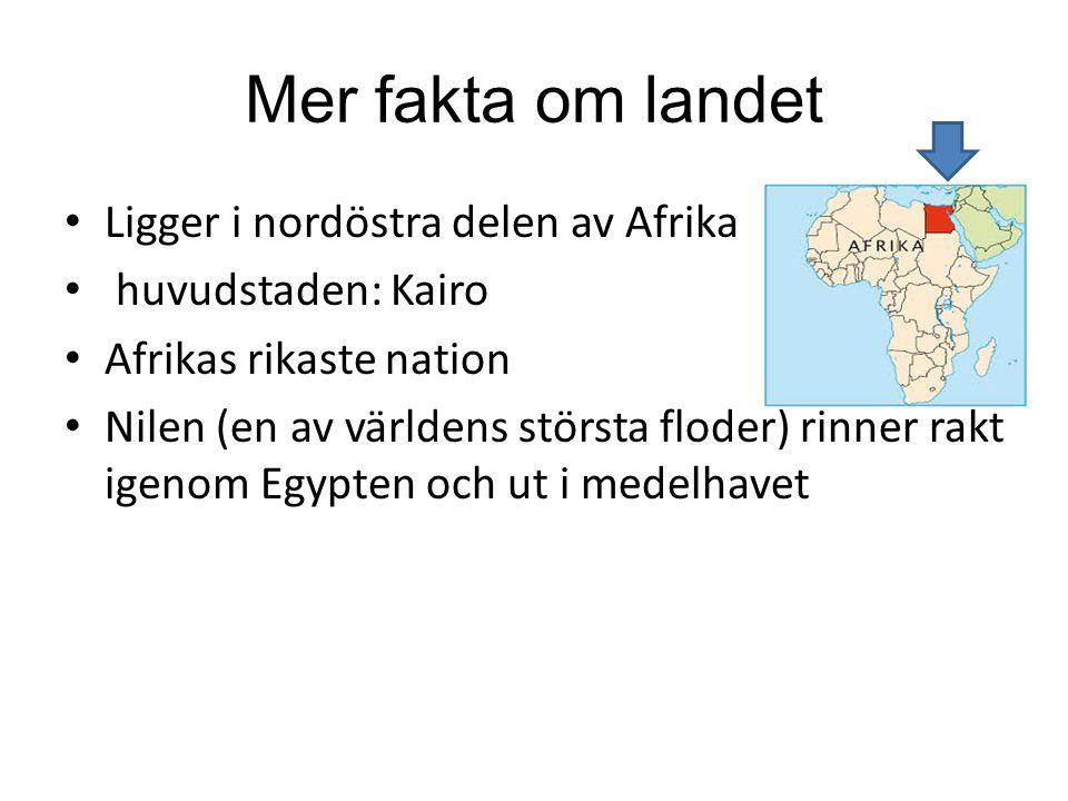 Mer fakta om landet Ligger i nordöstra delen av Afrika huvudstaden: Kairo Afrikas rikaste nation Nilen (en av världens största floder) rinner rakt ige