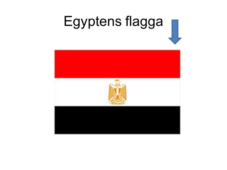 Egyptens flagga