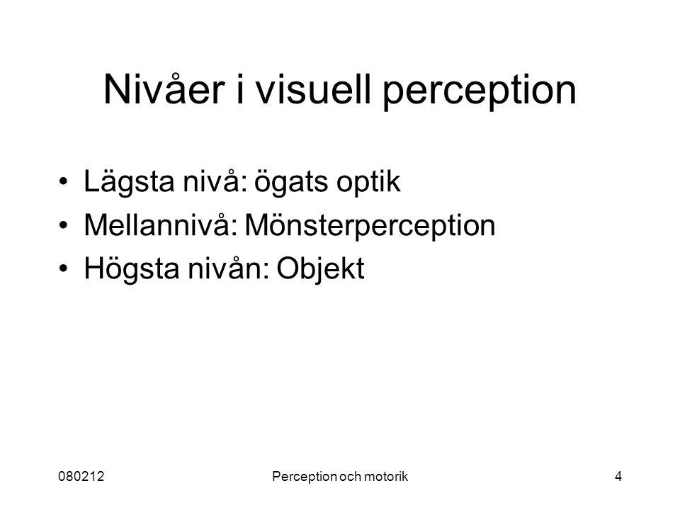 080212Perception och motorik4 Nivåer i visuell perception Lägsta nivå: ögats optik Mellannivå: Mönsterperception Högsta nivån: Objekt