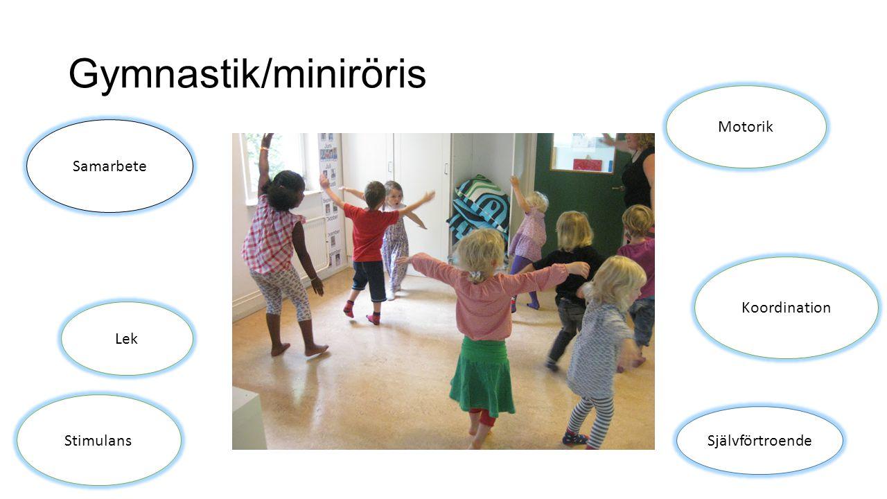 Gymnastik/miniröris Samarbete Lek Stimulans Motorik Koordination Självförtroende
