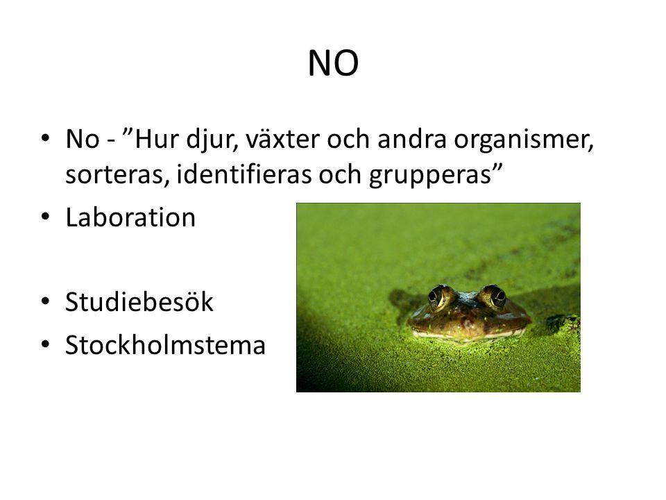 """NO No - """"Hur djur, växter och andra organismer, sorteras, identifieras och grupperas"""" Laboration Studiebesök Stockholmstema"""