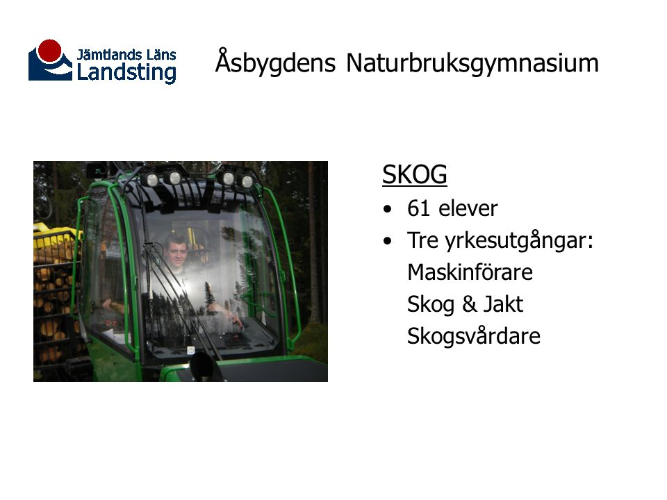 Åsbygdens Naturbruksgymnasium SKOG 61 elever Tre yrkesutgångar: Maskinförare Skog & Jakt Skogsvårdare