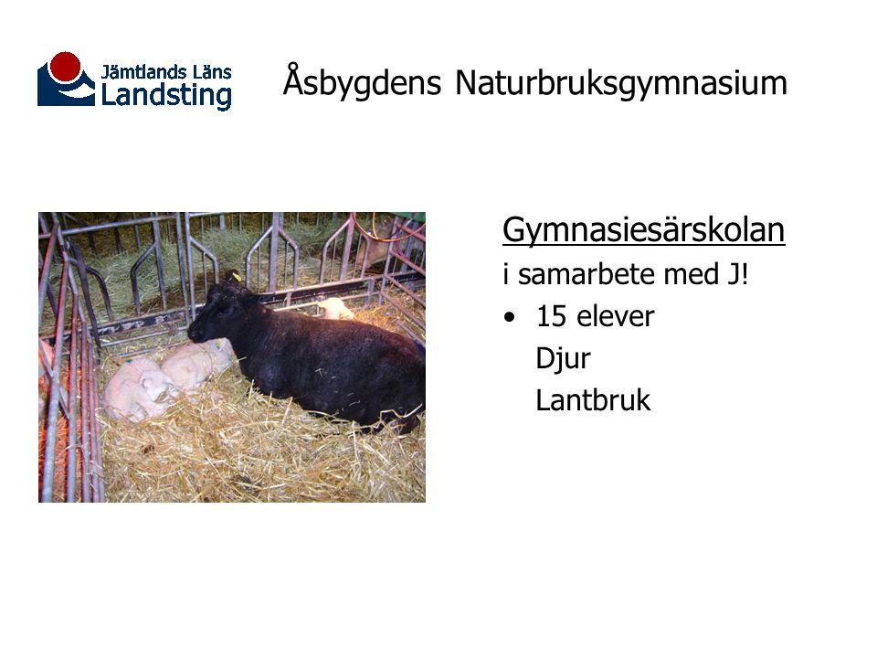 Åsbygdens Naturbruksgymnasium Lantbruk/vattenbruk Nyhet! Riksintag Yrkesutgång: Fiskodlare