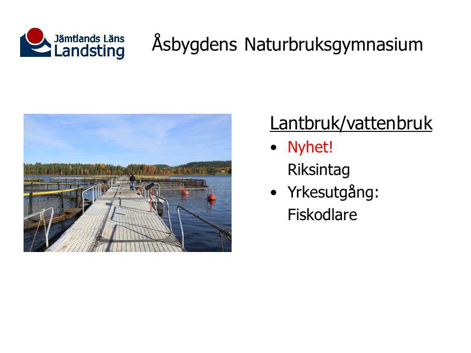 Åsbygdens Naturbruksgymnasium Internatet Öppnar ht 2011 Kostnaden för internatet ska finansieras genom avgifter.