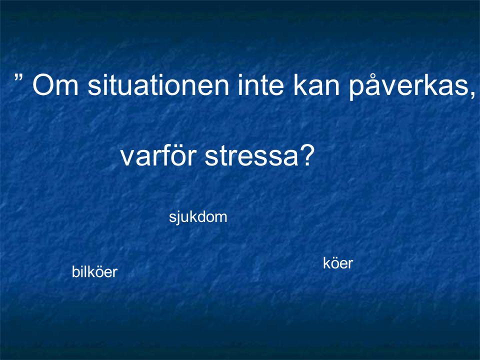 """"""" Om situationen inte kan påverkas, varför stressa? bilköer köer sjukdom"""