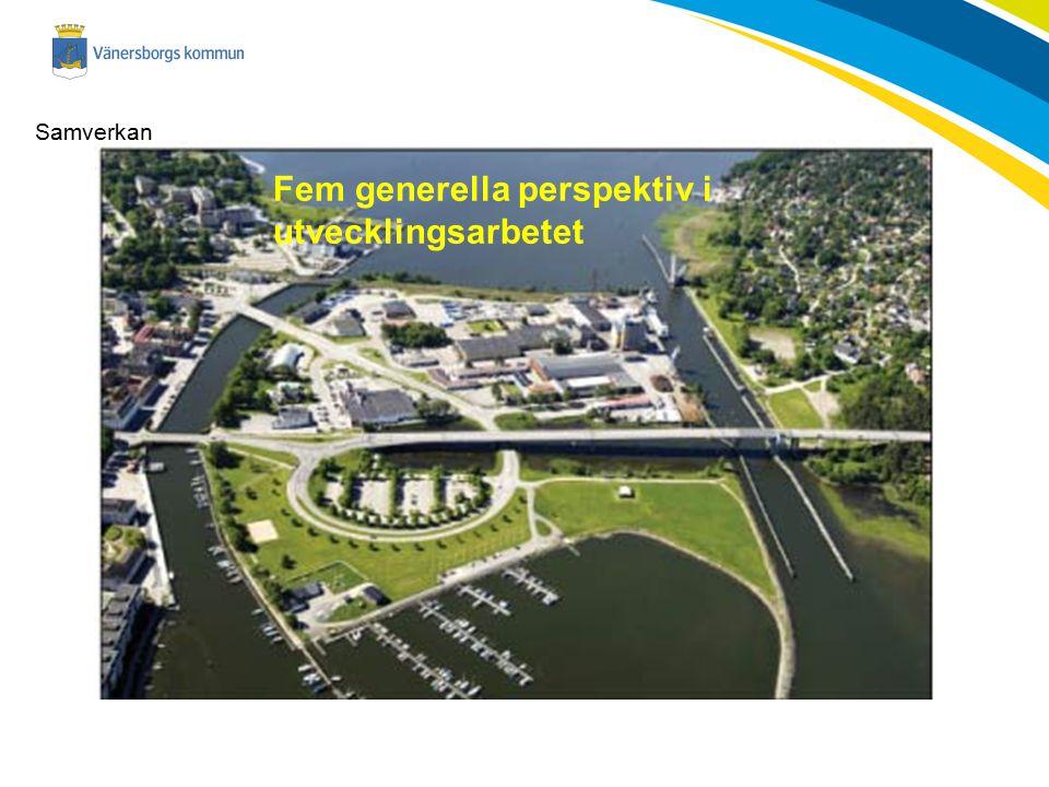Samverkan Fem generella perspektiv i utvecklingsarbetet
