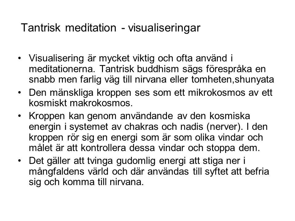 Tantrisk meditation - visualiseringar Visualisering är mycket viktig och ofta använd i meditationerna. Tantrisk buddhism sägs förespråka en snabb men