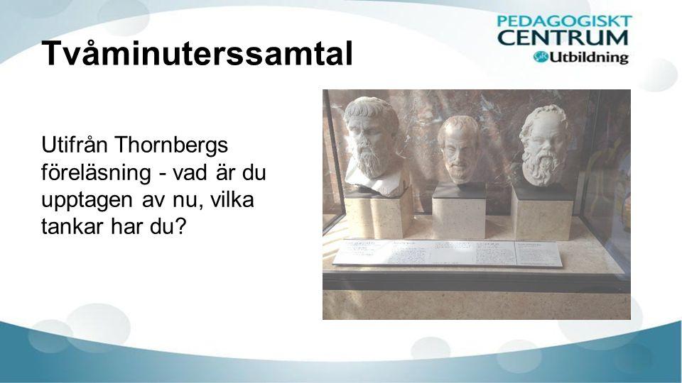 Tvåminuterssamtal Utifrån Thornbergs föreläsning - vad är du upptagen av nu, vilka tankar har du?