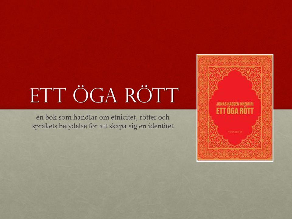 Ett öga rött en bok som handlar om etnicitet, rötter och språkets betydelse för att skapa sig en identitet
