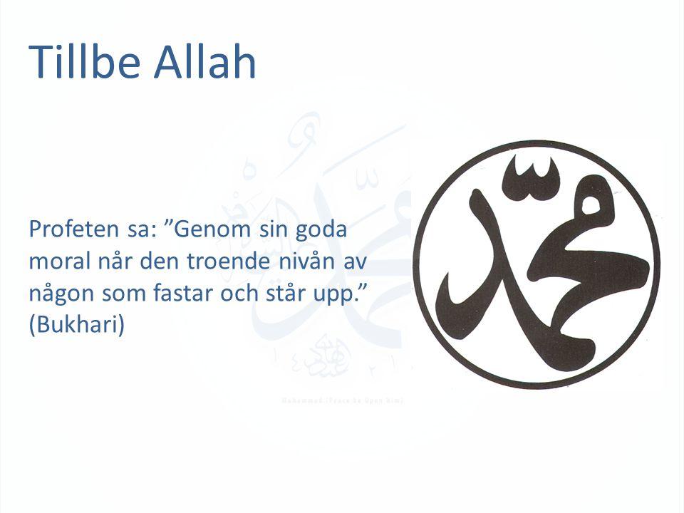Tillbe Allah Profeten sa: Genom sin goda moral når den troende nivån av någon som fastar och står upp. (Bukhari)
