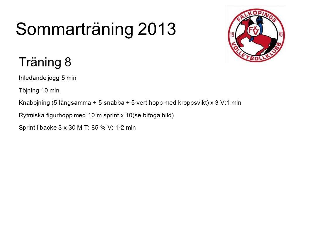 Sommarträning 2013 Träning 8 Inledande jogg 5 min Töjning 10 min Knäböjning (5 långsamma + 5 snabba + 5 vert hopp med kroppsvikt) x 3 V:1 min Rytmiska