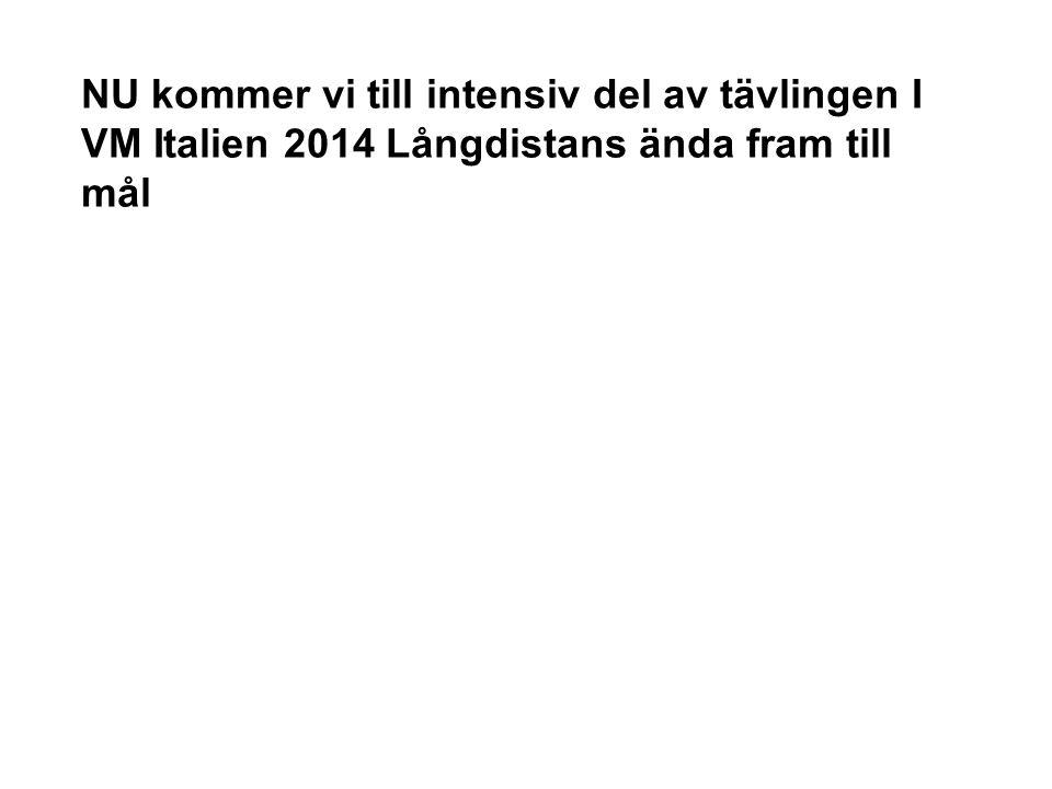 NU kommer vi till intensiv del av tävlingen I VM Italien 2014 Långdistans ända fram till mål