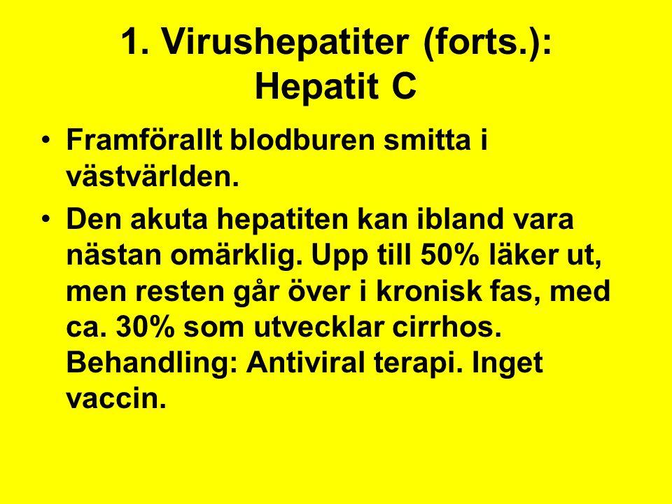 1. Virushepatiter (forts.): Hepatit C Framförallt blodburen smitta i västvärlden. Den akuta hepatiten kan ibland vara nästan omärklig. Upp till 50% lä