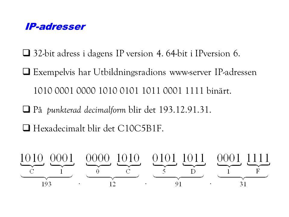 IP-adresser q32-bit adress i dagens IP version 4. 64-bit i IPversion 6. qExempelvis har Utbildningsradions www-server IP-adressen 1010 0001 0000 1010
