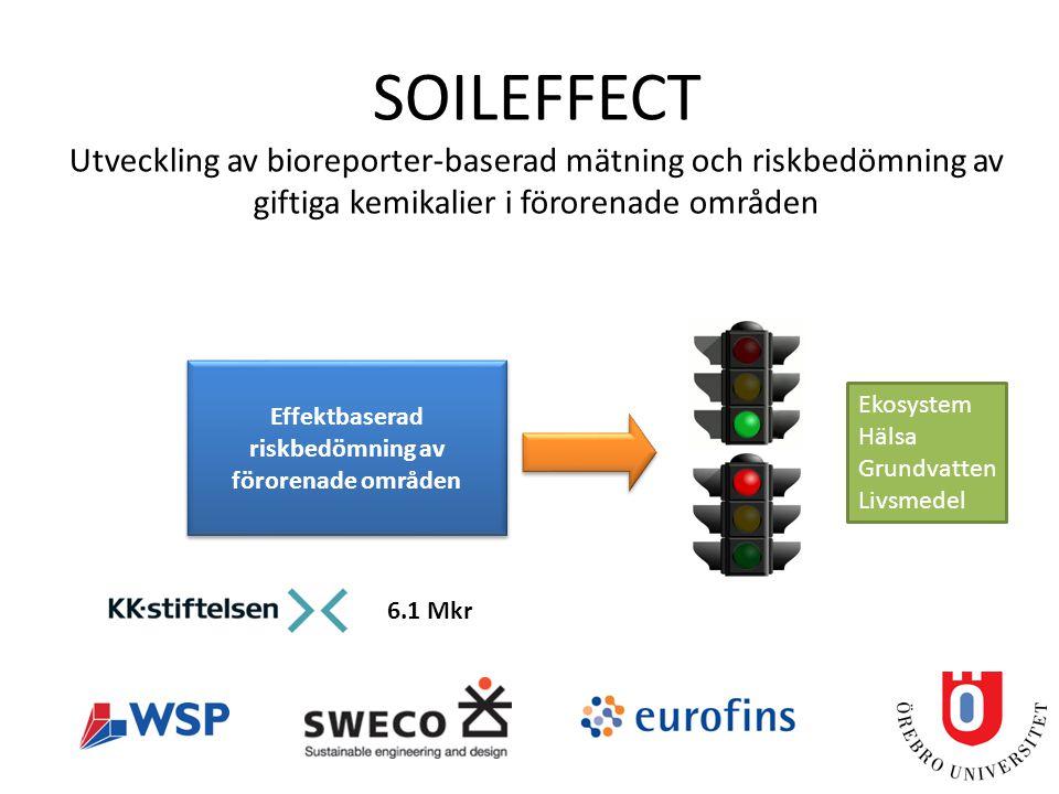 SOILEFFECT Utveckling av bioreporter-baserad mätning och riskbedömning av giftiga kemikalier i förorenade områden Effektbaserad riskbedömning av förorenade områden Ekosystem Hälsa Grundvatten Livsmedel 6.1 Mkr