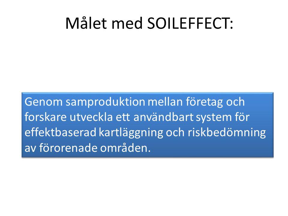 Målet med SOILEFFECT: Genom samproduktion mellan företag och forskare utveckla ett användbart system för effektbaserad kartläggning och riskbedömning av förorenade områden.