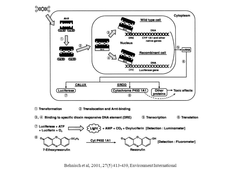 Bioreporters – Dioxinbioassay.